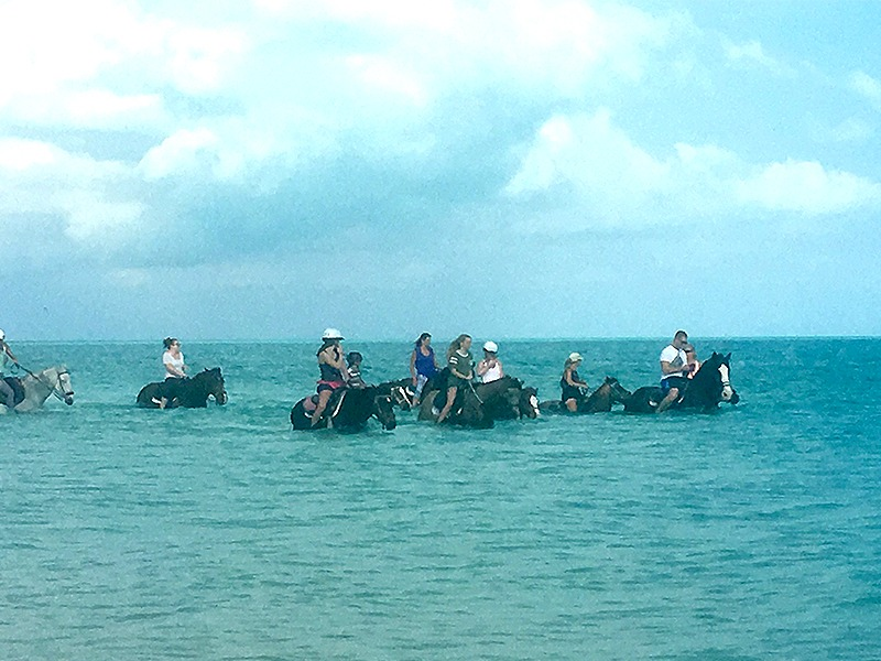 Group Horseback Riding in the Water