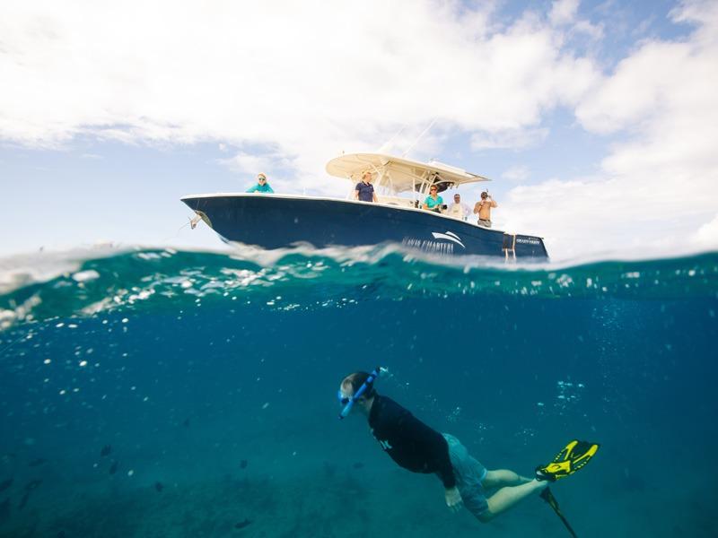 Snorkeler in Water Below the Vessel